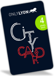 Lyon City Card 4 jours : Adulte
